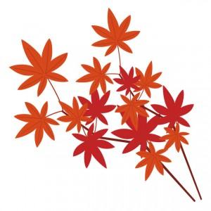 赤く染まった紅葉のイラスト