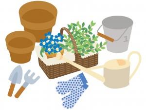 お花や植物のイラスト